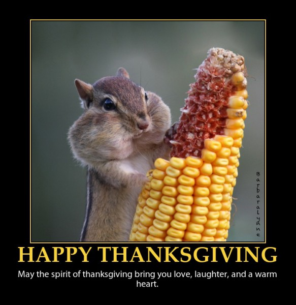 happy-thanksgiving-cute-squirel-blessing